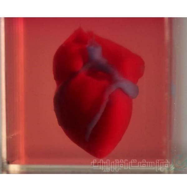 قلب ساخته شده با چاپگر سهبعدی